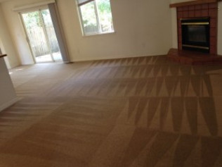 carpet cleaner in boise