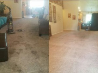best carpet cleaner boise